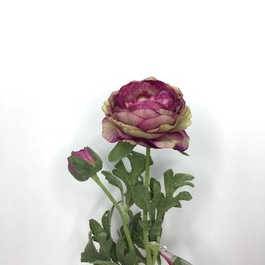Rannunculus Antique Purple 39cm