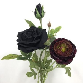 Black Burgundy Flowers