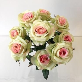 Green And Pink Rose x 9 Heads