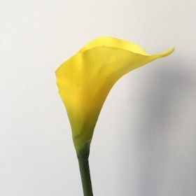 Yellow Calla Lily Medium 58cm