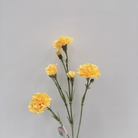 Gold Spray Carnation 62cm