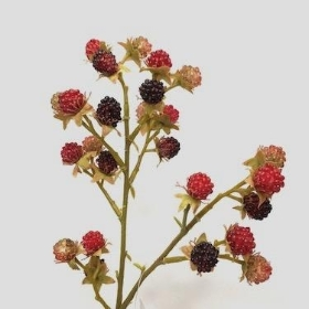 Blackberry Spray 62cm