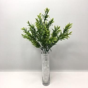 Mini Holly Bush 30cm
