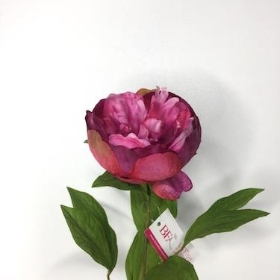 Pink Two Tone Peony 62cm