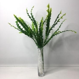 Green Fern Bush 40cm