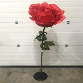 XXL Red Rose 170cm