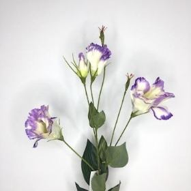 Lilac Two Tone Lisianthus 85cm