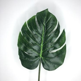 Monstera Leaf 80cm