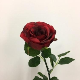 Red Rose Stem 65cm