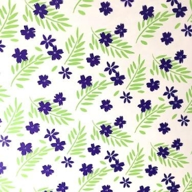 Purple And Lime Passion Cellophane 100m