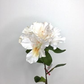 Ivory Rhododendron 64cm