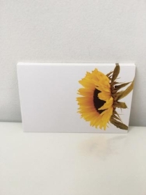 Florist Cards Sunflower
