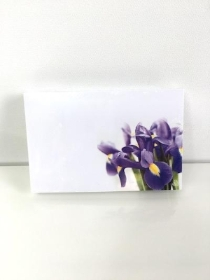 Small Florist Cards Purple Iris