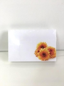 Small Florist Cards Orange Chrys