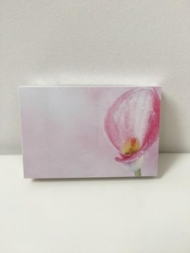 Florist Funeral Cards Calla Pink